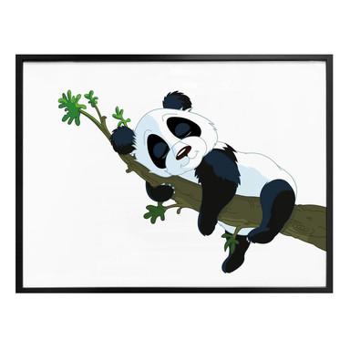Poster Schlafender Panda