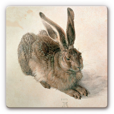 Glasbild Dürer - Junger Feldhase