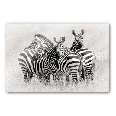 Glasbild Trubitsyn - Zebras in der Savanne