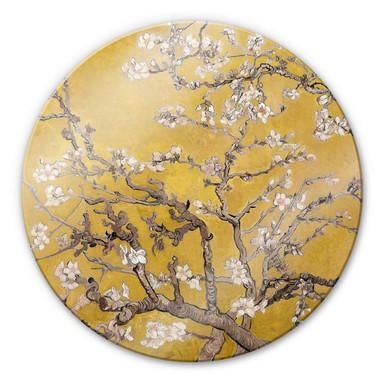 Glasbild van Gogh - Mandelblüte Ocker - Rund