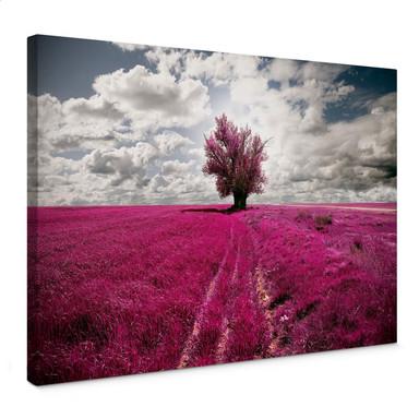 Leinwandbild The Lonely Tree