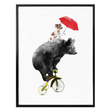 Poster Bicycling Bear