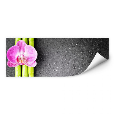 Wallprint Orchid and Bamboo - Panorama (horizontal)