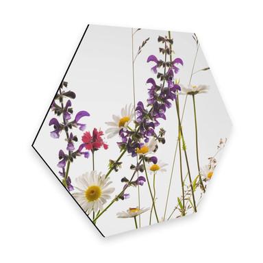 Hexagon - Alu-Dibond Kadam - Flora Marguerite