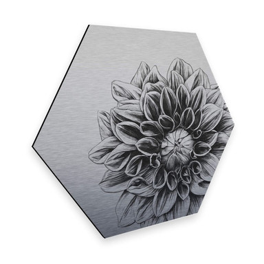 Hexagon - Alu-Dibond Silbereffekt Kools - Dahlia
