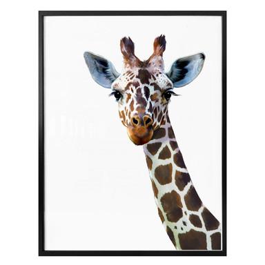Poster Graves - Giraffe