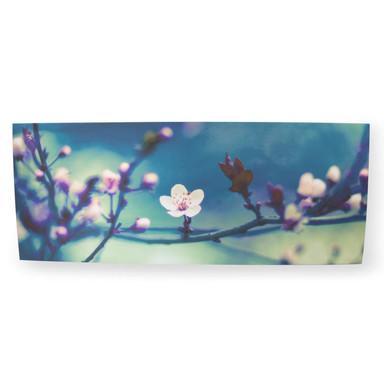 Leinwandbild Petite Petals - Bild 1
