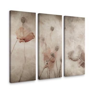 Leinwandbild Claes - Mohnblumen - 3x 30x80cm - Bild 1