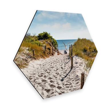 Hexagon - Alu-Dibond - Way to the Beach