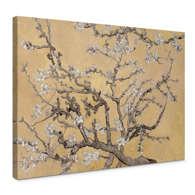 Leinwandbild van Gogh - Mandelblüte Creme