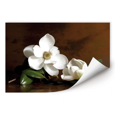 Wallprint Magnolienzweig mit Blättern