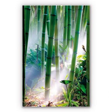 Wandbild Bamboo Forest