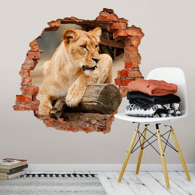 3D Wandtattoo Afrikanische Löwin