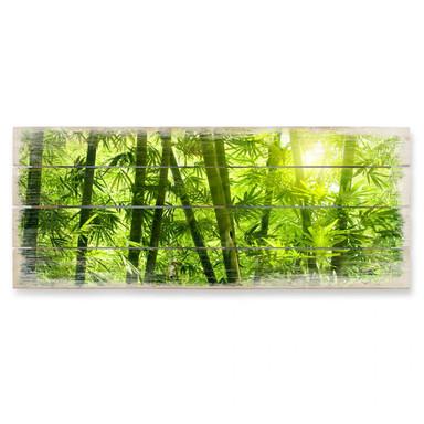 Holzbild Sonnenschein im Bambuswald - Panorama