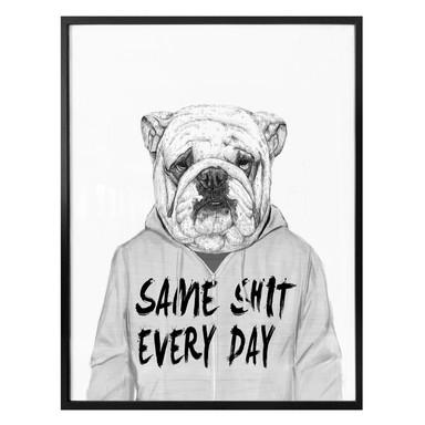 Poster Solti - Genervte Bulldogge