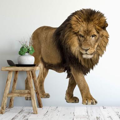 Wandsticker Real Lion
