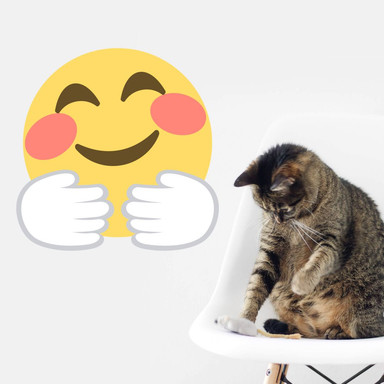Wandtattoo Emoji Hugging Face