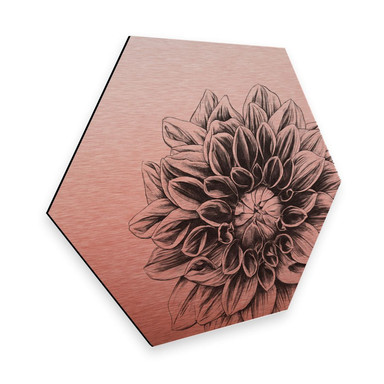 Hexagon - Alu-Dibond Kupfereffekt Kools - Dahlia