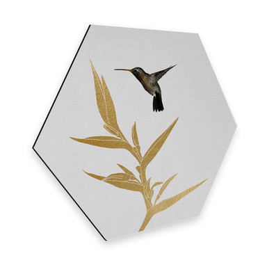 Hexagon - Alu-Dibond Orara Studio - Hummingbird and Flower - goldene Pflanze
