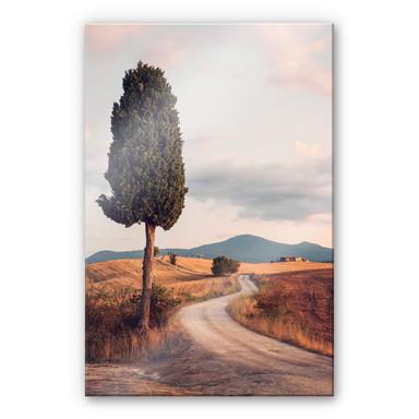 Acrylglasbild Colombo - Zypressenweg