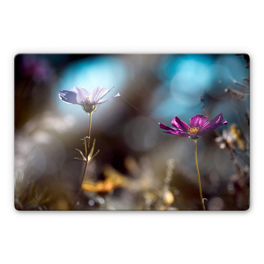 Glasbild Bravin - Blütenpaar