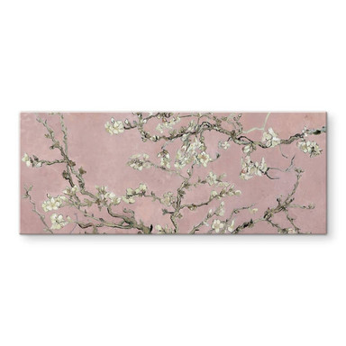 Glasbild van Gogh - Mandelblüte Rosé - Panorama