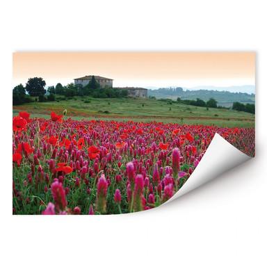 Wallprint Blumenwiese Toskana
