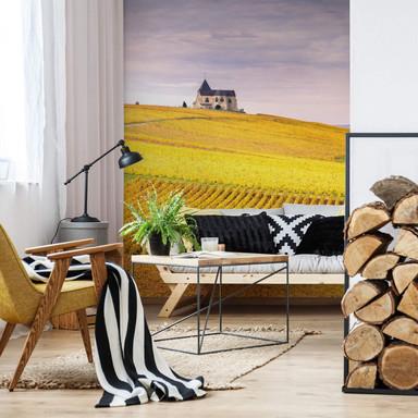 Fototapete Colombo - Weinfelder in der Champagne - 192x260cm - Bild 1