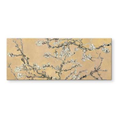 Glasbild van Gogh - Mandelblüte Creme - Panorama