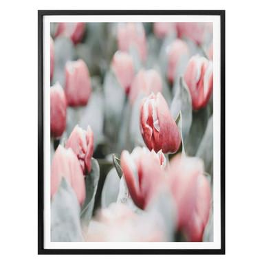 Poster Annie - Frühlingstulpen