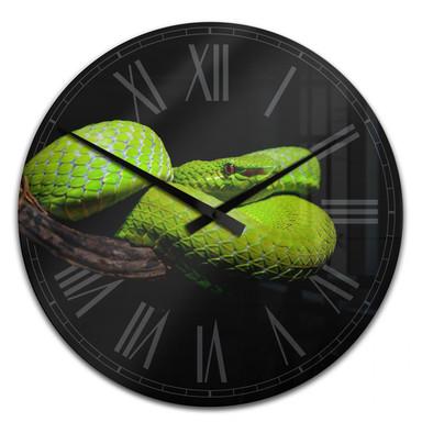 Wanduhr Hakonsen - Die grüne Pit-Viper
