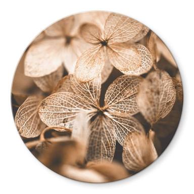 Glasbild Annie - Zarte Blüten - Rund
