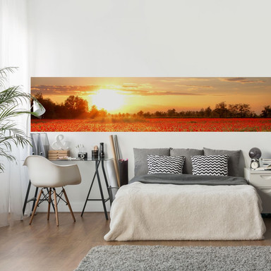 Fototapete Mohnfeld im Sonnenuntergang - Panorama - 48x260cm - Bild 1