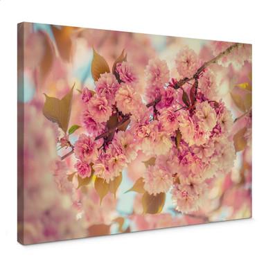 Leinwandbild Delgado - Kirschblüten
