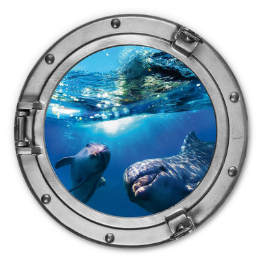 Alu-Dibond 3D Optik - Dolphins Underwater - Rund