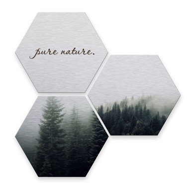 Hexagon - Alu-Dibond-Silbereffekt - Pure Nature Wald (3er Set)