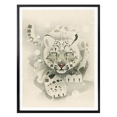 Poster Braun - Schneeleopard