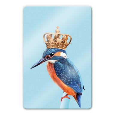 Glasbild Loose - Kingfisher