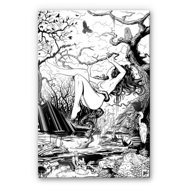 Acrylglasbild Drawstore - Swampland