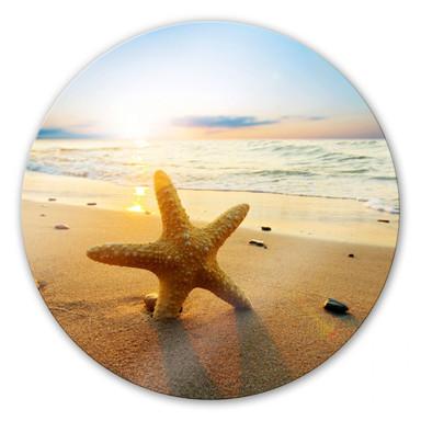 Glasbild Seestern im Sand - rund