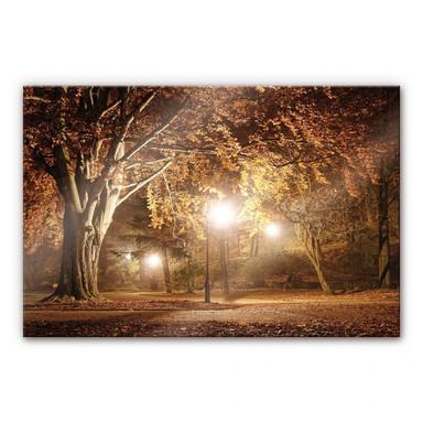 Acrylglasbild Herbst im Park