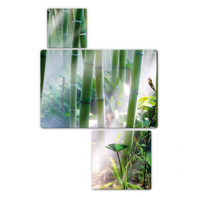Glasbild Bamboo Forest (3-teilig)