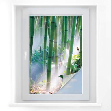 Sichtschutzfolie Bamboo Forest