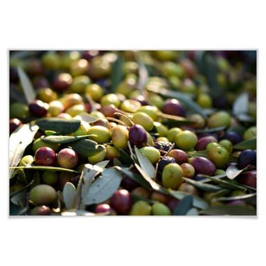 Poster Mediterrane Oliven