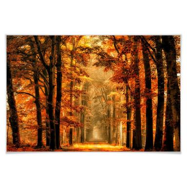 Poster van de Goor - Herbstallee