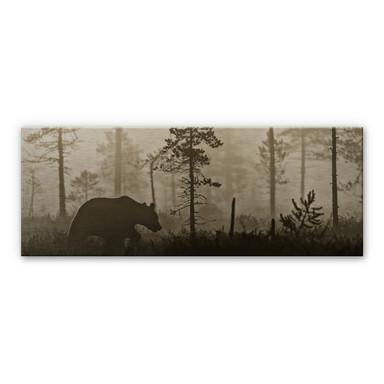 Alu-Dibond Bild Ove Linde - Nebel am Morgen - Panorama