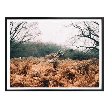 Poster Im Wald
