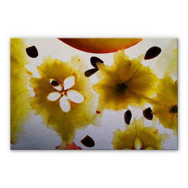 Alu-Dibond Abstract Fruit
