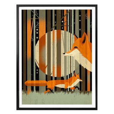 Poster Braun - Midnight Foxes