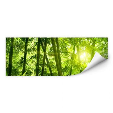 Wallprint Sonnenschein im Bambuswald - Panorama